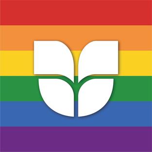 Orgulho LGBTI+