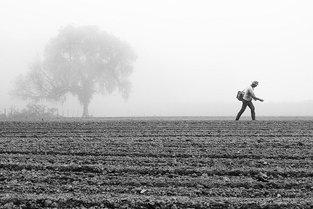 Professor da Univille tem trabalho selecionado no Prêmio New Holland de Fotojornalismo